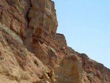 В Керчи мужчина погиб при падении с обрыва