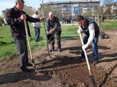 В районе Пневматики в Симферополе проведут субботник