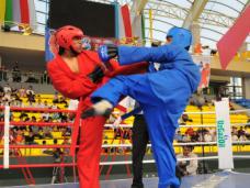 В Симферополе проведут соревнования по универсальному бою