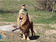 «UniCredit Bank» заблокировал счета крымского зоопарка «Сказка» и парка львов «Тайган»