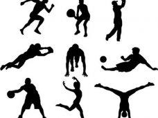 Спортом в Крыму займется профильное предприятие