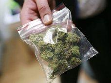 Жителя северного Крыма задержали за хранение марихуаны