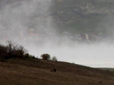 В Крыму усилился ветер
