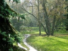 На неделе в Крыму ожидаются дожди