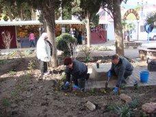 В Алуште обновили сквер на набережной