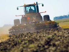 В Крыму из-за проблем с водой не посеяли овощи и поздние зерновые