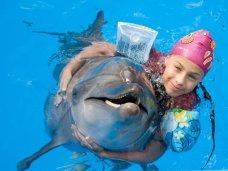 Дельфинарий в Алуште возобновил сеансы дельфинотерапии