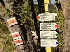 В Рескомлесе Крыма заявили о невозможности создать предприятие для взимания платы с туристов