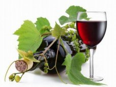 Крымские виноделы объединились в «Крымское бюро винограда и вина»