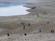 На территории водохранилища в Симферополе проведут субботник