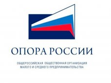 В Крыму и Севастополе созданы отделения «Опоры России»