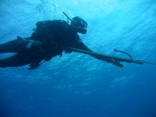 На фестивале «EXTREME Крым» пройдут международные соревнования по кайтсерфингу и подводной охоте