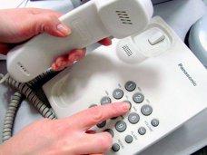 На горячую линию Совмина за неделю поступило 2,5 тыс. звонков