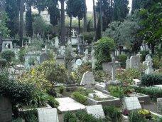 В Большой Ялте определили место городского кладбища