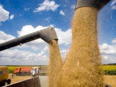 Крым не намерен экспортировать зерно в страны ЕС