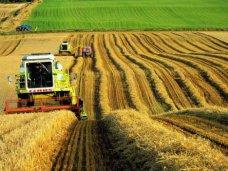 В Минсельхозе Крыма создадут управление по развитию сельских территорий