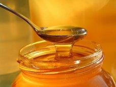 В Крым пытались провезти 20 тонн поддельного меда