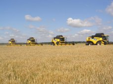 В Крыму убрали 163,8 тыс. га ранних зерновых