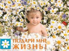В Крыму проводят социальную акцию «Подари мне жизнь!»