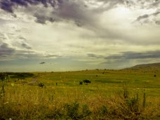 В Крыму не стоит спешить с продажей земли сельхозназначения, – вице-премьер