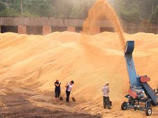 В Красноперекопском районе на зернотоке погиб ребенок