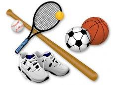 В Крыму создали отделение Комитета национальных и неолимпийских видов спорта РФ