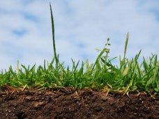 Федеральный агрохимический центр оценит плодородие крымских почв