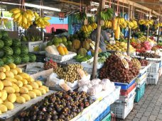 В Крыму необходимо обеспечить беспрепятственную реализацию местной продукции, – вице-премьер