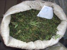 В Севастополе задержали местного жителя с килограммом марихуаны
