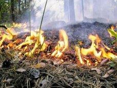 В Крыму ожидается чрезвычайная пожарная опасность