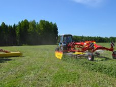 Один из сельских советов Сак незаконно выделил рекреационные земли под жилую застройку