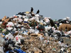 В Симферополе провели рейд по мусорному полигону