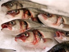 В Крым через границу пытались провезти 24 тонны рыбы неизвестного происхождения