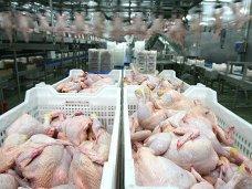 Крым готов поставлять в Подмосковье фрукты и мясо птицы