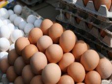 В Крым не пустили три фуры с яйцами неизвестного происхождения