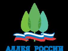 Выборы зеленых символов регионов РФ продлили до 31 октября