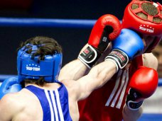 В Ялте проведут международный турнир по боксу