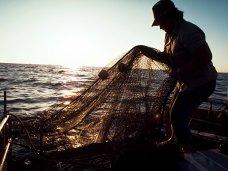 За вылов тонны промысловой рыбы в Керчи осужден браконьер