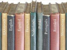 В Крыму подготовили программу развития образования на родных языках