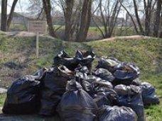 Севастопольские спасатели очистили от мусора прибрежную зону