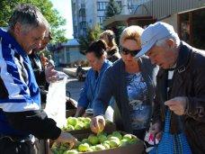 В Евпатории проводятся дни продажи яблок