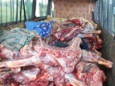 Партия украинской свинины в 20 тонн не попала в Крым из-за отсутствия справки ветслужбы