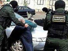 Наркополиция ликвидировала сеть распространения крупных партий марихуаны в Севастополе