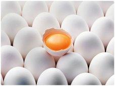 Более 370 тысяч яиц из Херсона и Киевской области не попали в Крым