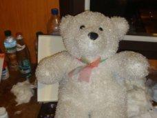 Через крымскую границу пытались провезти плюшевого медведя, набитого запрещенными лекарствами