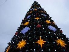 Главную елку в Севастополе откроют 27 декабря