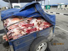 Россельхознадзор на границе Украины с Крымом задержал контрабандную баранину