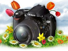 На фотоконкурс «Твоя Крымская весна» за первую неделю прислали более 500 работ