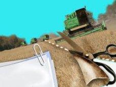 В Крыму необходимо разработать нормативы по оформлению земельных паев – председатель Госкомрегистра РК
