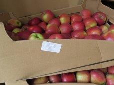 14% украинских овощей и фруктов не прошли проверку на безопасность